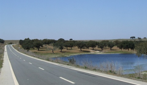 Typical empty Alentejo road - and scenery.