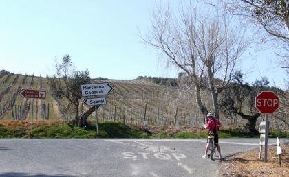 Junction on the N115 between Sobral and Merceana