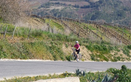 Climbing past vineyards on the way towards Merceana