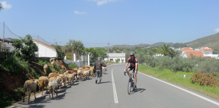 Heavy traffic in the Algarve Hills